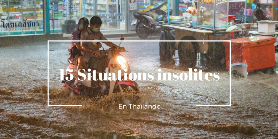 situations insolites en Thaïlande